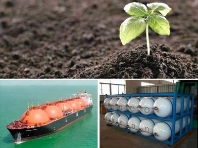 CNG Fertilizer And  LNG