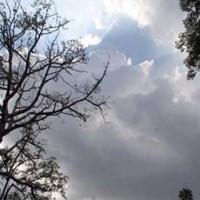 Dry Weather