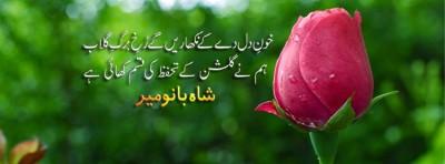 Shahbano Mir Poetry