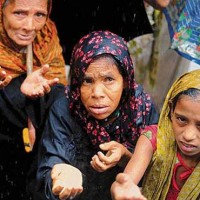Beleaguered Rohingya Muslims