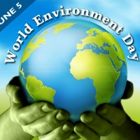 Environment International Day