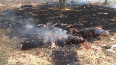Killed Mmuslims with armed terrorist buddhists in Meiktila Myanmar
