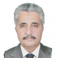 Malik Falak Sher Awan