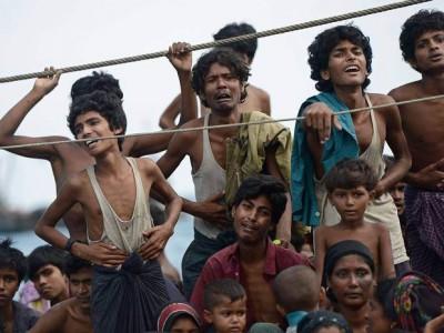 Muslim Migrants