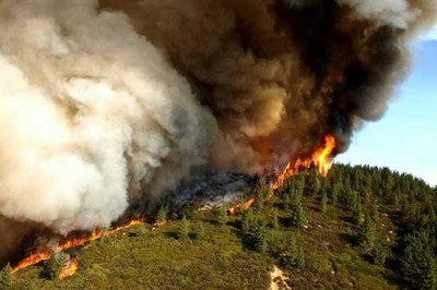 Southern California Forests Fire