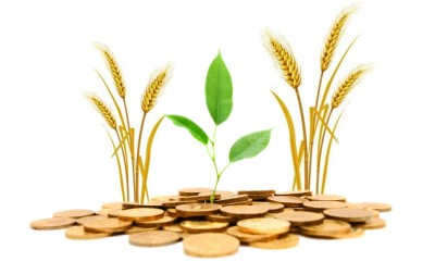Agricultural Loans