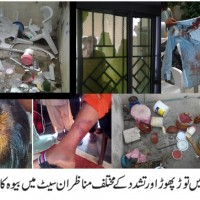 Bndalh Shaheed Widow House Attacked