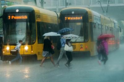 Polland Heavy Rain