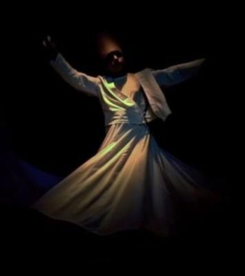Rumi's Ecstacy