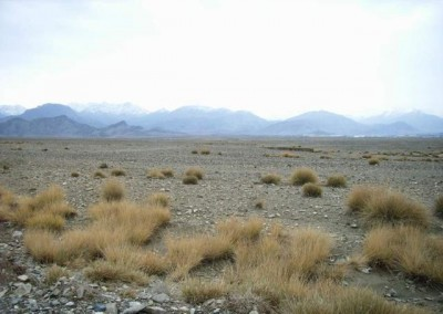 Afghan Wilderness Area
