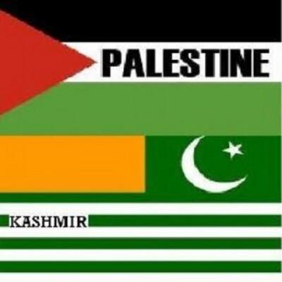 Kashmir And Faletine