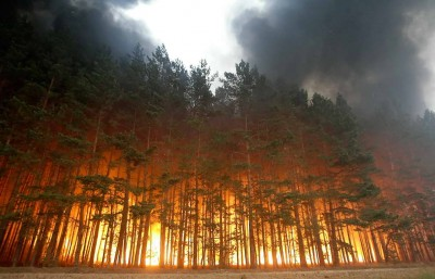 Russian Forests Fire