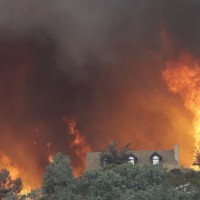California Frests Fire