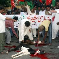 Sacrifice Goats