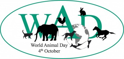 Animals Global day