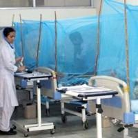 Dengue Patients