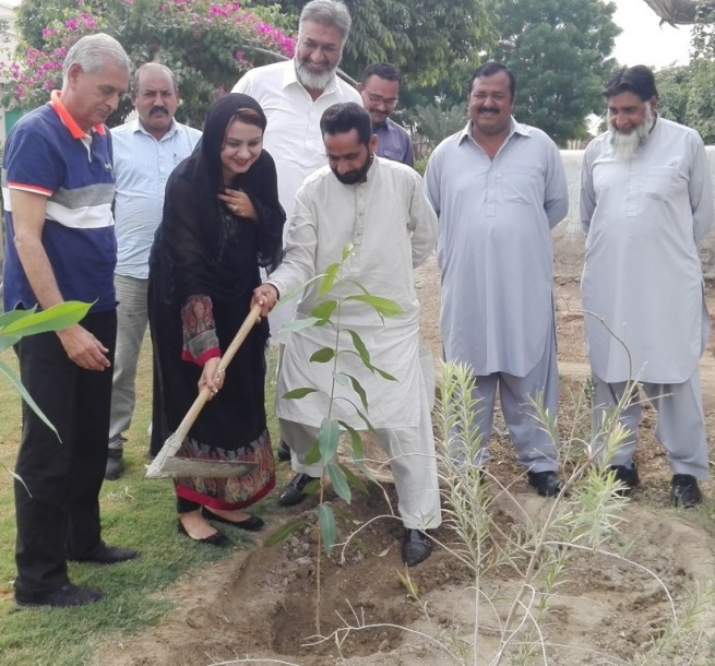 Tree Plantation by Maiza Hameed