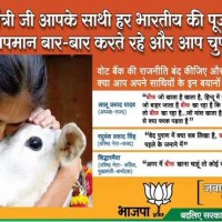 BJP Sectarian Advertisement