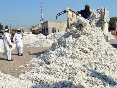 Cotton Prices