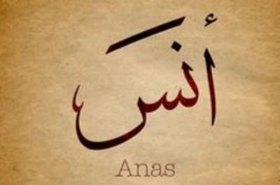 Hazrat Anas