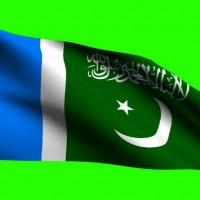 Jamaat e Islam