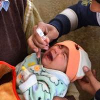 Polio Compain