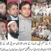 UC 8 PML N Public Meeting