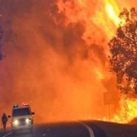 Australia Forest Fire