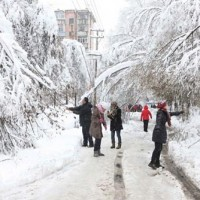 Snowfall Chaina
