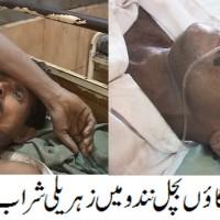 Badin Sharab News