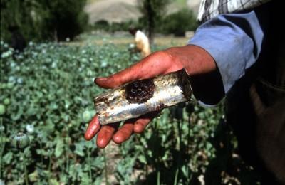 Drug Trafficking in Afghanistan