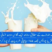 Milk - urdu
