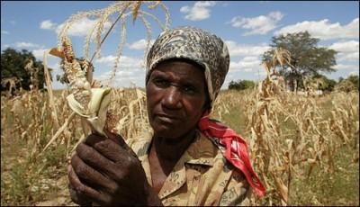 Zimbabwe Malnutrition