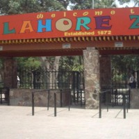 Close Lahore Zoo