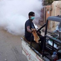 Dengue Spray