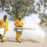 Dengue Spray