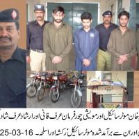 Thief Arrest