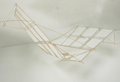 Bamboo kites