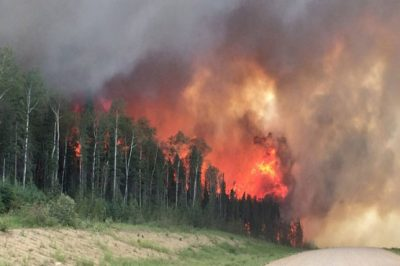 Canada Forest Fire