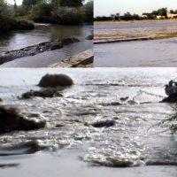 K.N.Shah, Rice Canal Ko Shigaaf