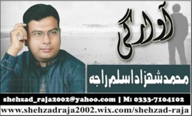 Shehzad Aslam Raja Logo
