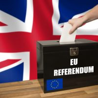 British Referendum