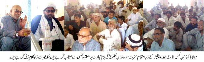 Haider Welfare Pakistan Organization Meeting