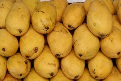 Mango in Pakistan