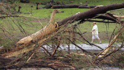 Flood Ravages