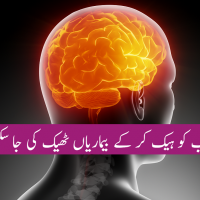 Human brain hack