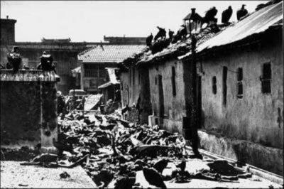 Kilngs Muslims