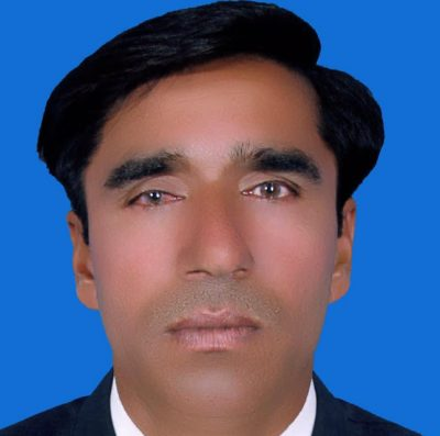 Mansha Fareedi