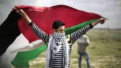 Palestine Day