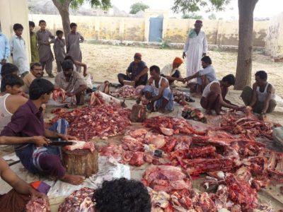 Qurbani Meat